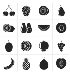 Black Different kind of fruit and icons vector image vector image