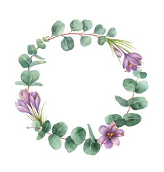 watercolor round wreath with eucalyptus vector image