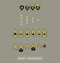 army military insignia vector image