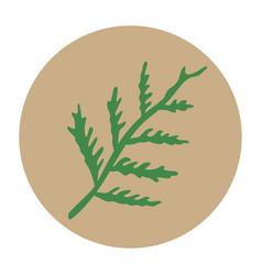 Flat-icon-cypress-leaf vector