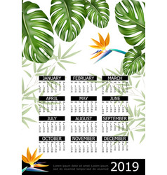 realistic tropical 2019 year calendar poster vector image