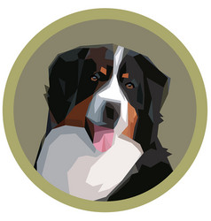 portrait of a bernese mountain dog vector image vector image