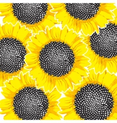 sunflowers background vector image vector image