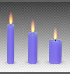 Burning candles isolated vector