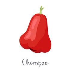 Champoo exotic juicy fruit isolated java vector