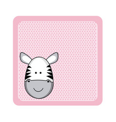 Colorful greeting card with picture zebra animal vector