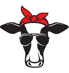 cow head with aviator sunglasses color vector image