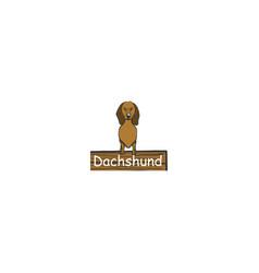 dachshund cartoon dog icon vector image
