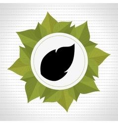 leaf plant natural sheet vector image