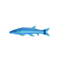 Mackerel of blue color fish vector