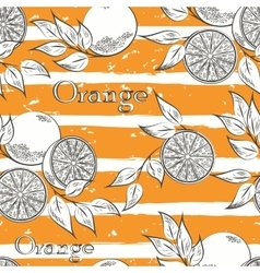 Oranges on orange stripes vector
