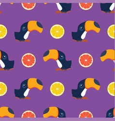 pattern with toukan and citrus vector image