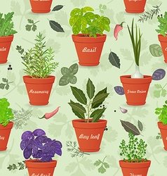 vintage seamless texture with herbs planted in vector image
