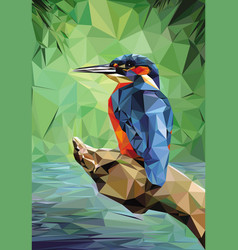 kingfisher low poly vector image