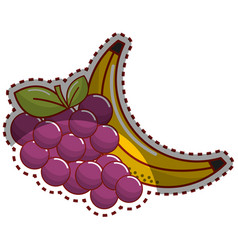sticker grape and babana fruit icon vector image vector image