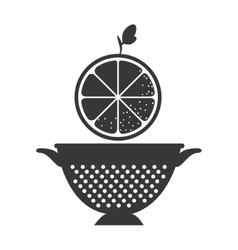 Fruit and kitchen colander vector