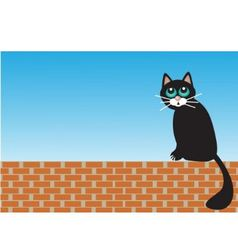 Sad cat sitting on bricks vector