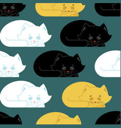 sleeping cat pattern kitten be asleep seamless vector image