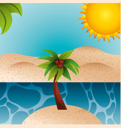 summer time concept vector image