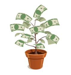 Money tree with dollars in pot vector image