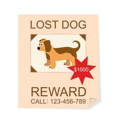 Cartoon color lost dog ad poster card vector
