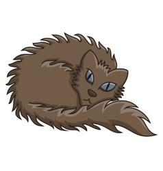 Dark Brown Fluffy Cat vector image