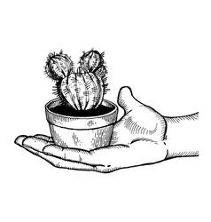 Hand with cactus engraving vector