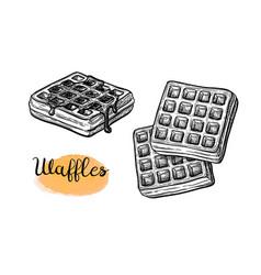 Ink sketch waffle vector