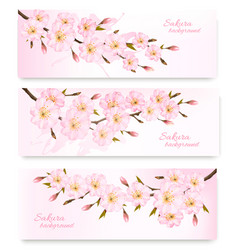 Nature spring banners with al pink sakura vector