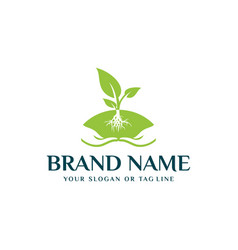 Plant leaf logo and hand vector