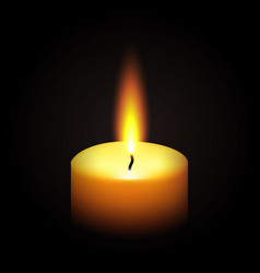 Realistic paraffin burning candle vector