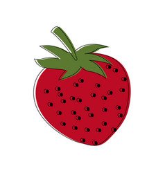 Strawberry fruit fresh natural food organic vector