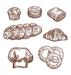 Sweet bread bun sketch of bakery pastry product vector