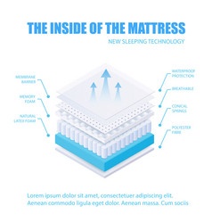 The inside layered breathable membrane vector