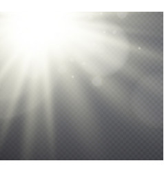 White light effect sunlight beams vector