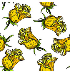 yellow rose floral hand drawn pattern background vector image