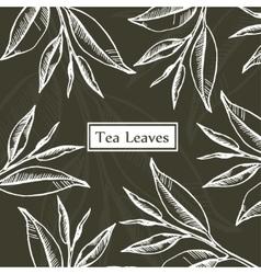 Tea leaves design template vector image