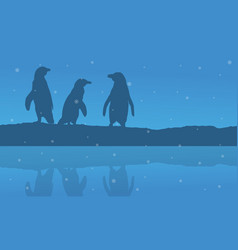 Silhouette penguin with reflection scenery vector