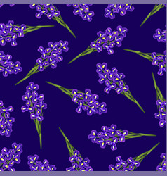 Dark blue purple iris flower on navy blue vector
