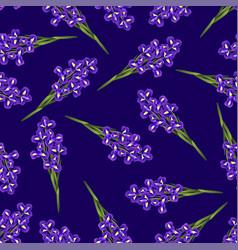 dark blue purple iris flower on navy blue vector image
