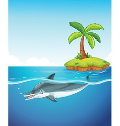 Dolphin swimming under the sea vector image