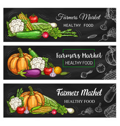 healthy farmer market vegetables and salads vector image