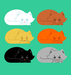 sleeping cat set black and white yellow and brown vector image
