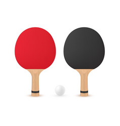 two table tennis rackets with ball vector image