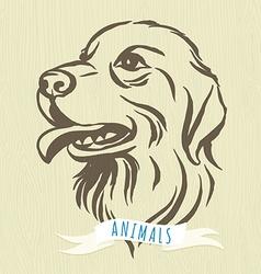 Hand drawn portrait of dog labrador vector image