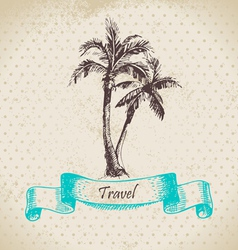 Hand drawn vintage background with palms vector image