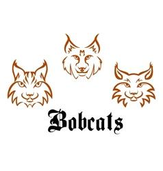 Bobcats and lynxs vector image