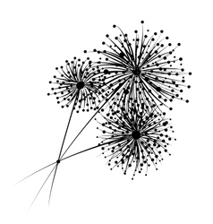 Dandelion flowers for your design vector image