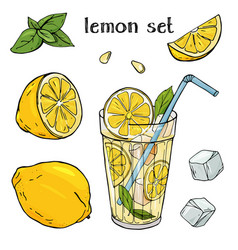 cool lemonade in a glass cup with ice and mint vector image
