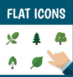 flat icon ecology set of decoration tree park vector image